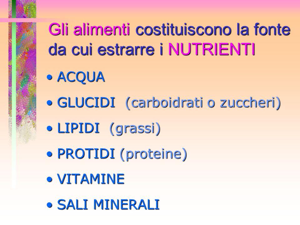Gli alimenti costituiscono la fonte da cui estrarre i NUTRIENTI