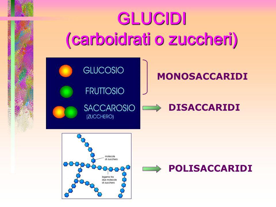GLUCIDI (carboidrati o zuccheri)