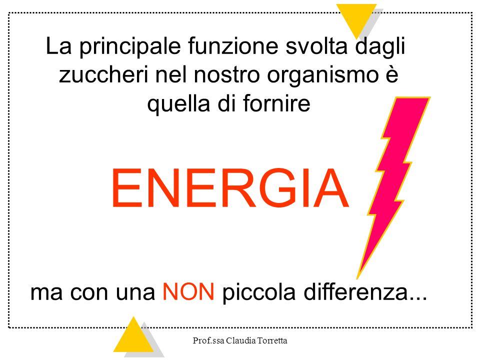 ENERGIA La principale funzione svolta dagli