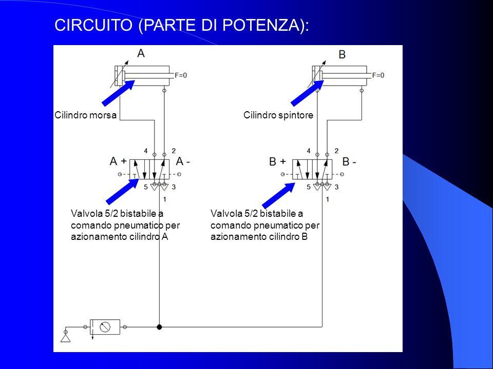 CIRCUITO (PARTE DI POTENZA):