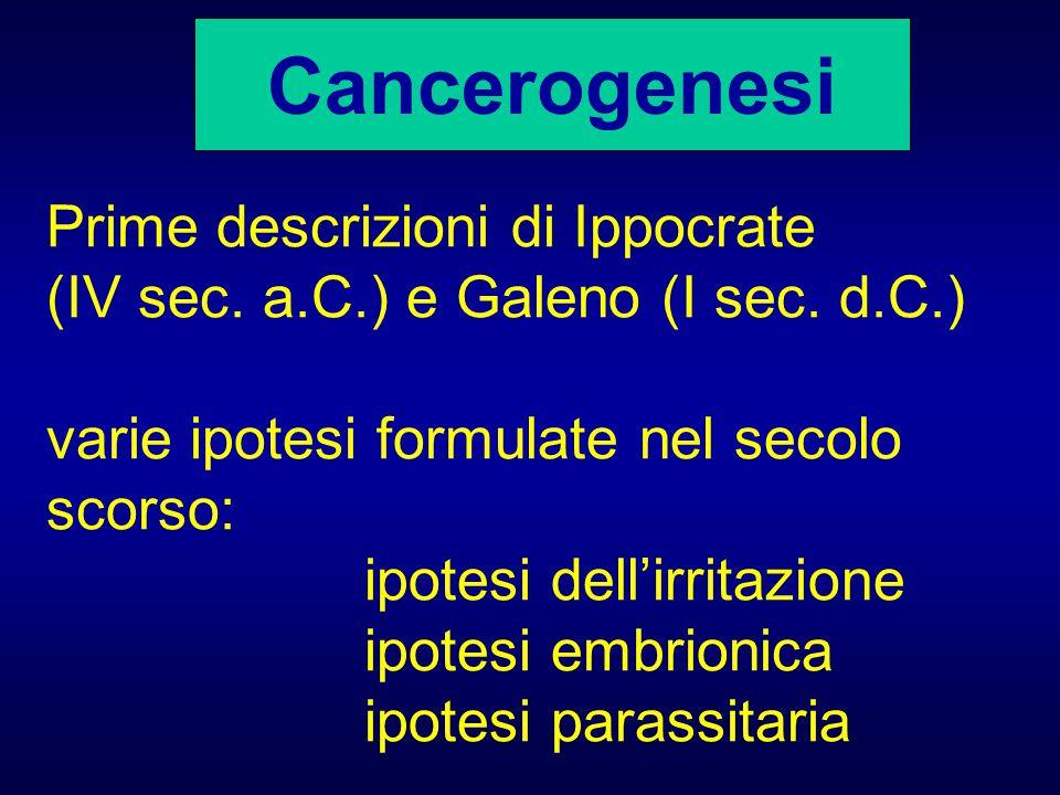 Cancerogenesi Prime descrizioni di Ippocrate