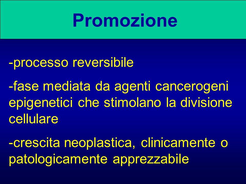 Promozione -processo reversibile