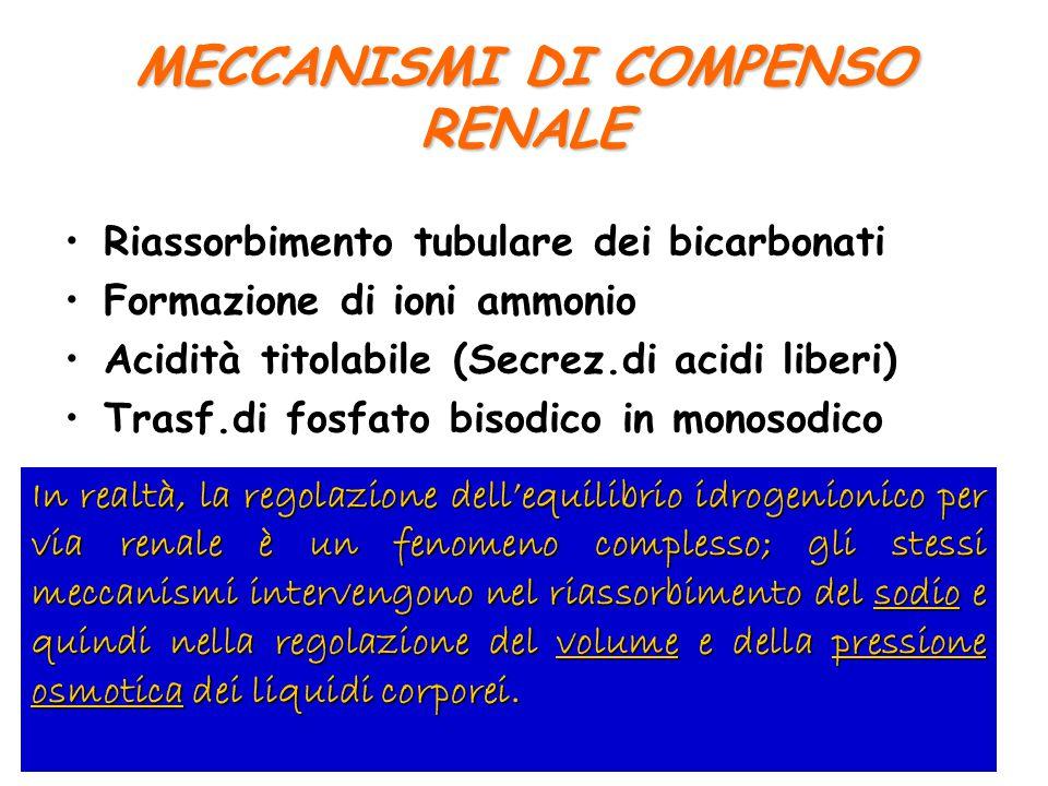 MECCANISMI DI COMPENSO RENALE