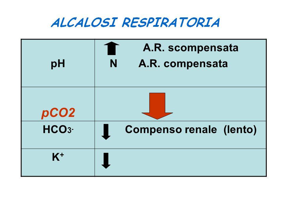 pCO2 pH A.R. scompensata N A.R. compensata HCO3-