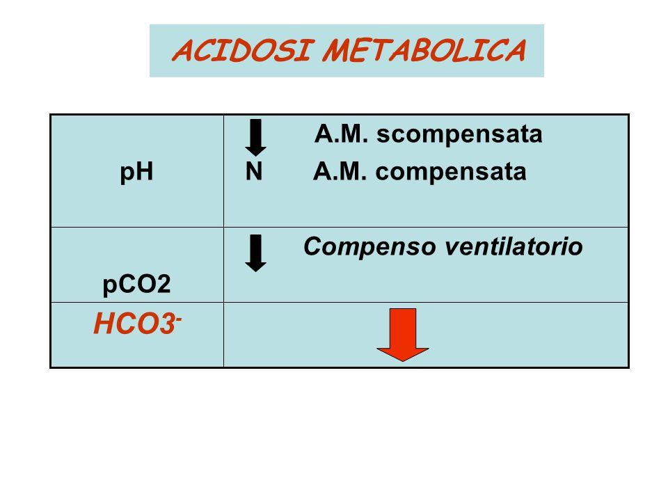 ACIDOSI METABOLICA HCO3- Compenso ventilatorio pCO2 A.M. scompensata