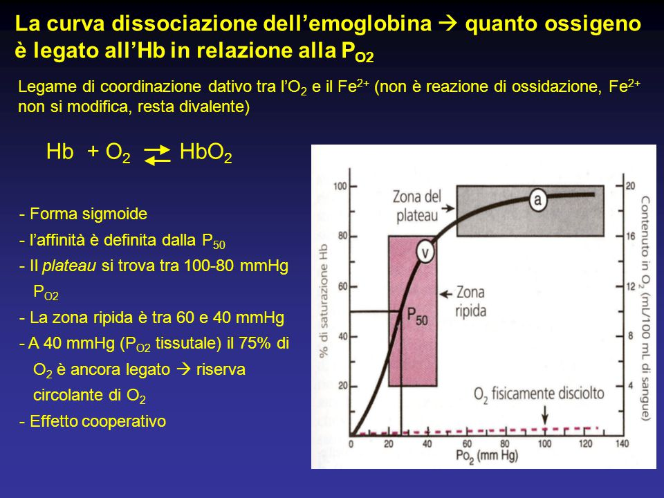 La curva dissociazione dell'emoglobina  quanto ossigeno è legato all'Hb in relazione alla PO2