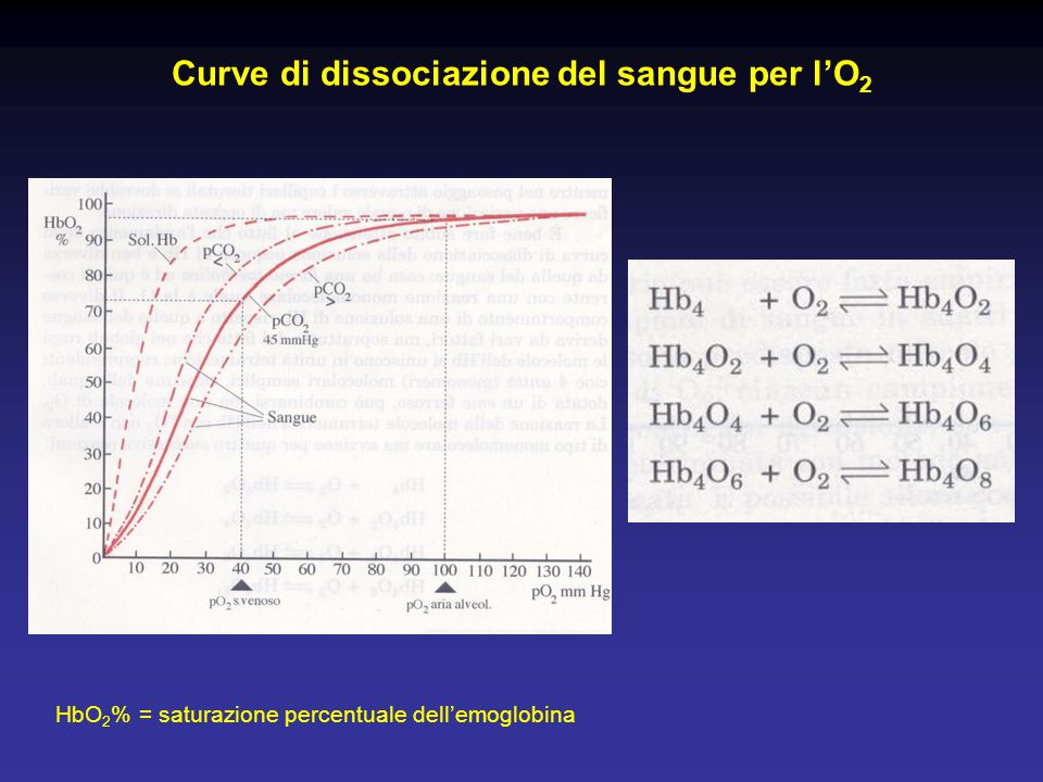Curve di dissociazione del sangue per l'O2