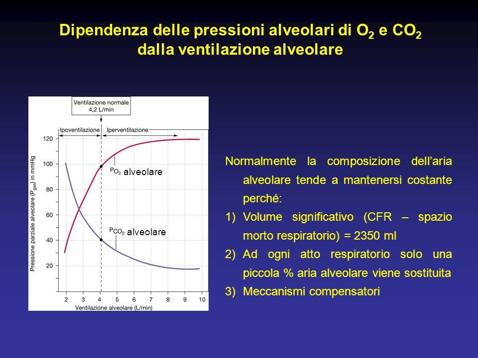 Dipendenza delle pressioni alveolari di O2 e CO2