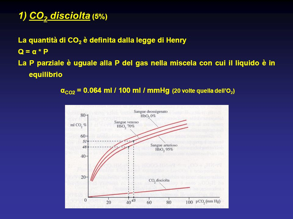 αCO2 = 0.064 ml / 100 ml / mmHg (20 volte quella dell'O2)