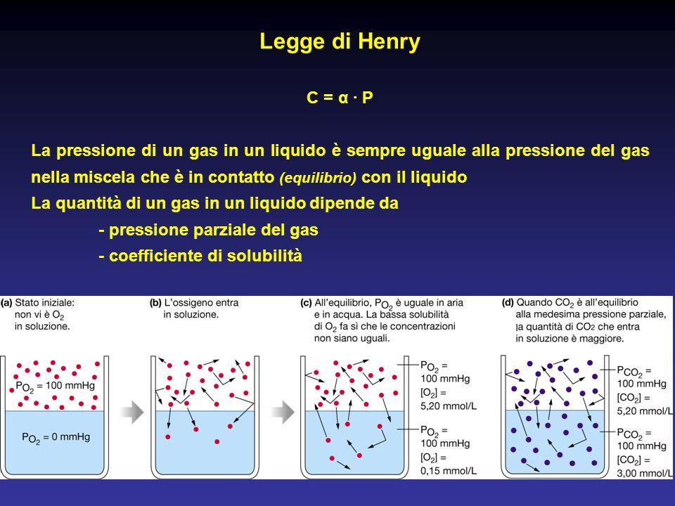 Legge di Henry C = α · P.