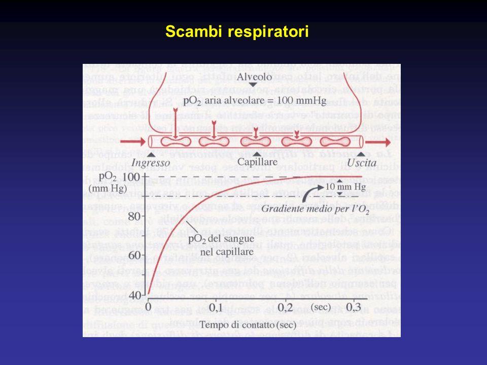 Scambi respiratori