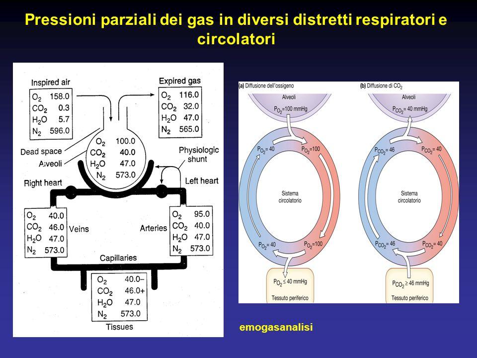 Pressioni parziali dei gas in diversi distretti respiratori e circolatori
