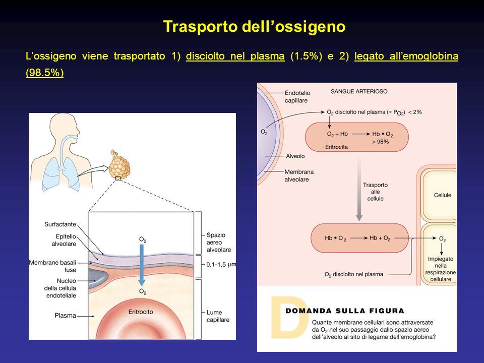 Trasporto dell'ossigeno