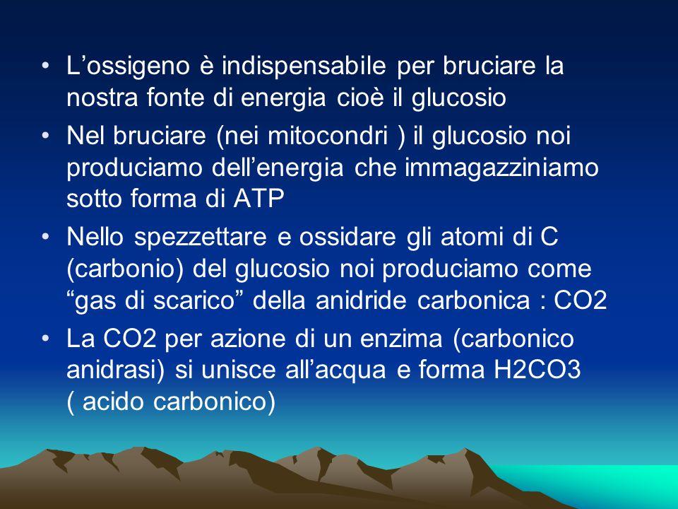 L'ossigeno è indispensabile per bruciare la nostra fonte di energia cioè il glucosio