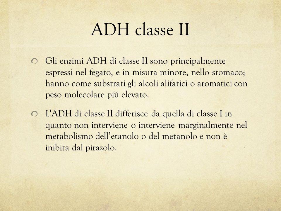 ADH classe II