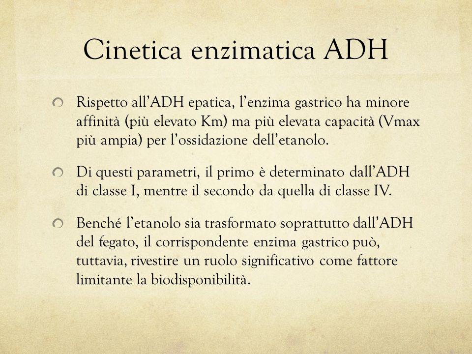 Cinetica enzimatica ADH