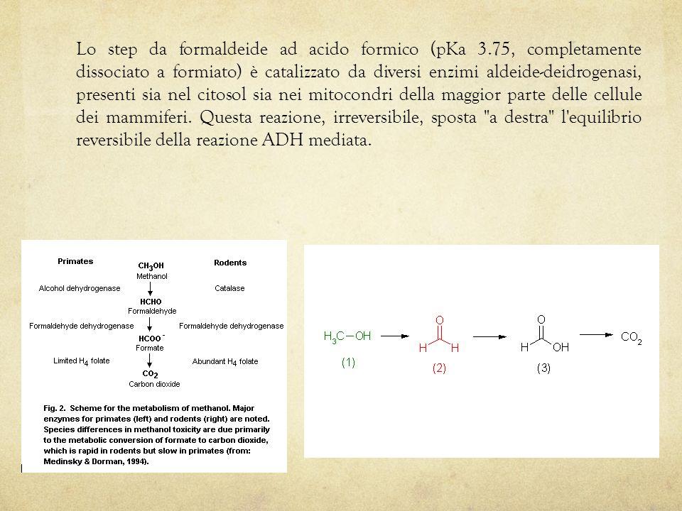 Lo step da formaldeide ad acido formico (pKa 3