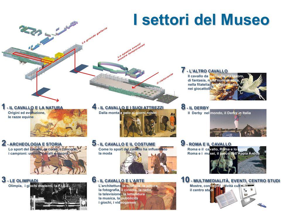 I settori del Museo