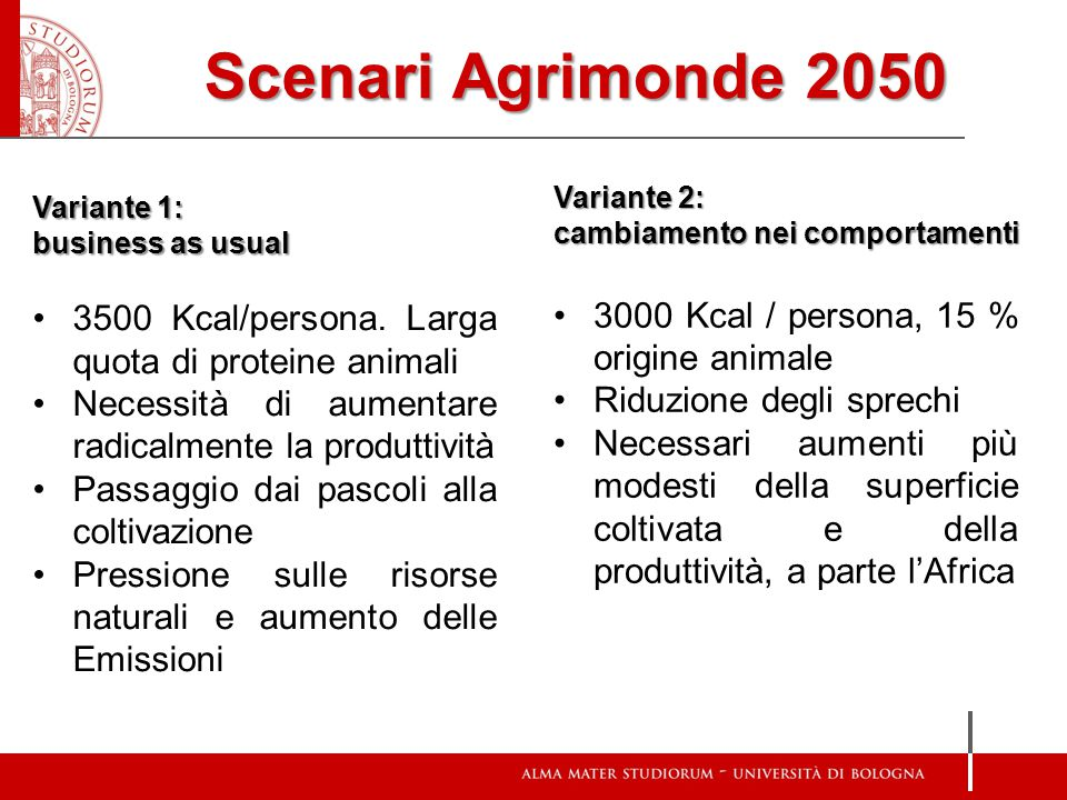 Scenari Agrimonde 2050 Variante 1: business as usual. 3500 Kcal/persona. Larga quota di proteine animali.