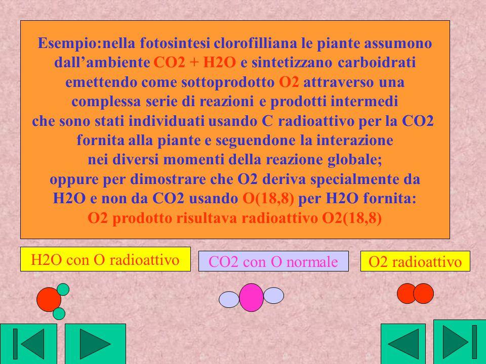 Esempio:nella fotosintesi clorofilliana le piante assumono