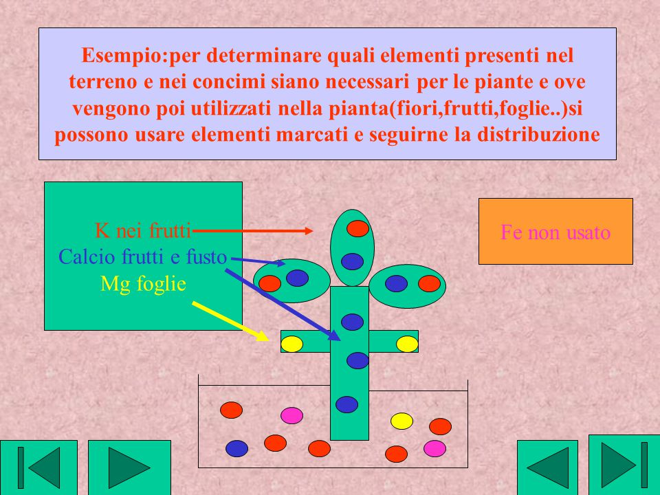 Esempio:per determinare quali elementi presenti nel
