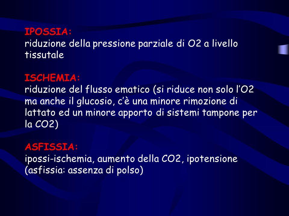 IPOSSIA: riduzione della pressione parziale di O2 a livello tissutale ISCHEMIA: riduzione del flusso ematico (si riduce non solo l'O2 ma anche il glucosio, c'è una minore rimozione di lattato ed un minore apporto di sistemi tampone per la CO2) ASFISSIA: ipossi-ischemia, aumento della CO2, ipotensione (asfissia: assenza di polso)