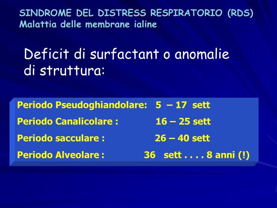 Deficit di surfactant o anomalie di struttura: