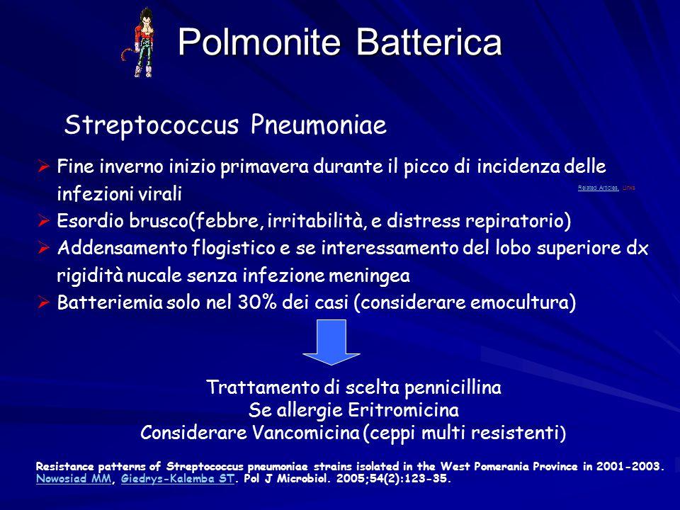 Polmonite Batterica Streptococcus Pneumoniae