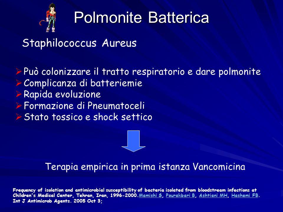 Terapia empirica in prima istanza Vancomicina