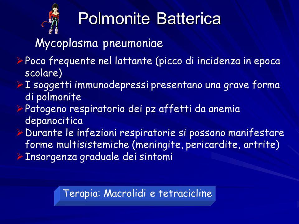Polmonite Batterica Mycoplasma pneumoniae