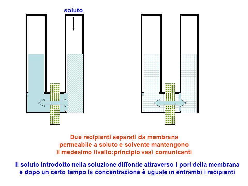 soluto Due recipienti separati da membrana permeabile a soluto e solvente mantengono il medesimo livello:principio vasi comunicanti.