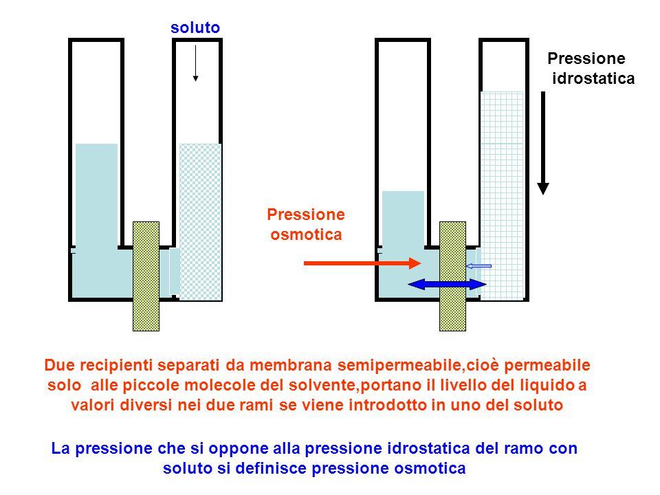 soluto Pressione idrostatica. Pressione osmotica.