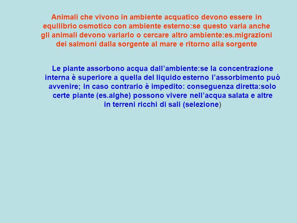 Animali che vivono in ambiente acquatico devono essere in equilibrio osmotico con ambiente esterno:se questo varia anche gli animali devono variarlo o cercare altro ambiente:es.migrazioni dei salmoni dalla sorgente al mare e ritorno alla sorgente