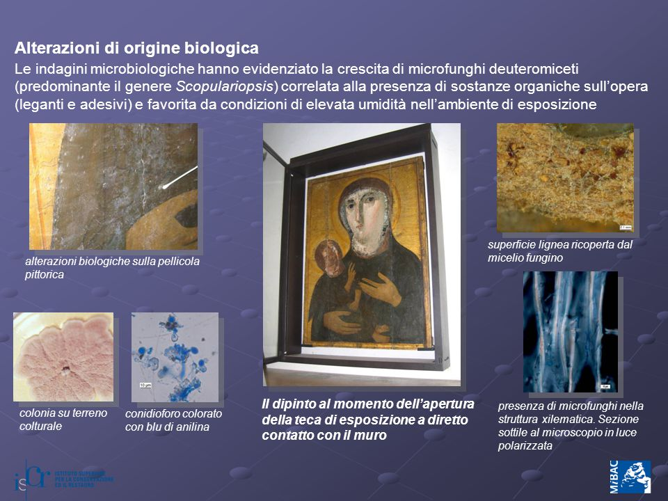 Alterazioni di origine biologica