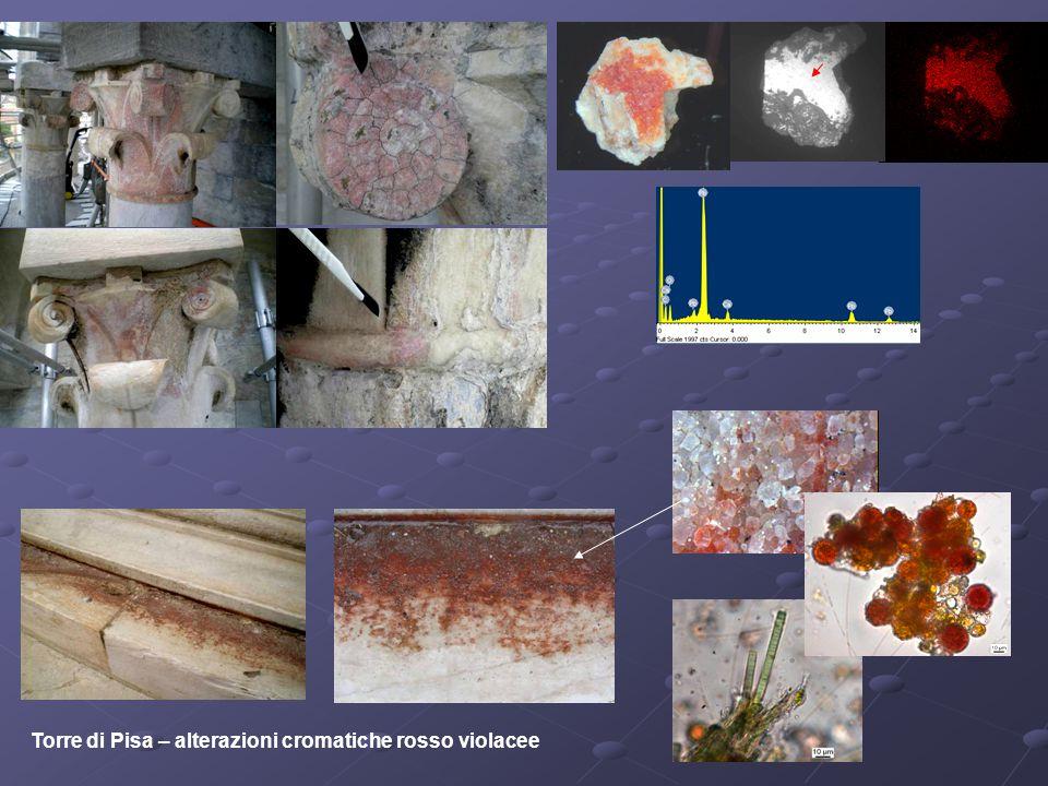 Torre di Pisa – alterazioni cromatiche rosso violacee