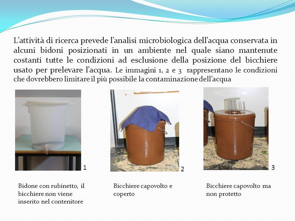 L'attività di ricerca prevede l'analisi microbiologica dell'acqua conservata in alcuni bidoni posizionati in un ambiente nel quale siano mantenute costanti tutte le condizioni ad esclusione della posizione del bicchiere usato per prelevare l'acqua. Le immagini 1, 2 e 3 rappresentano le condizioni che dovrebbero limitare il più possibile la contaminazione dell'acqua