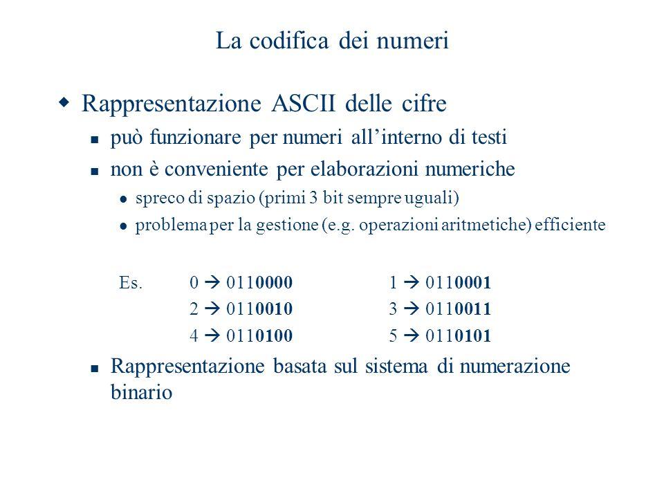 Rappresentazione ASCII delle cifre