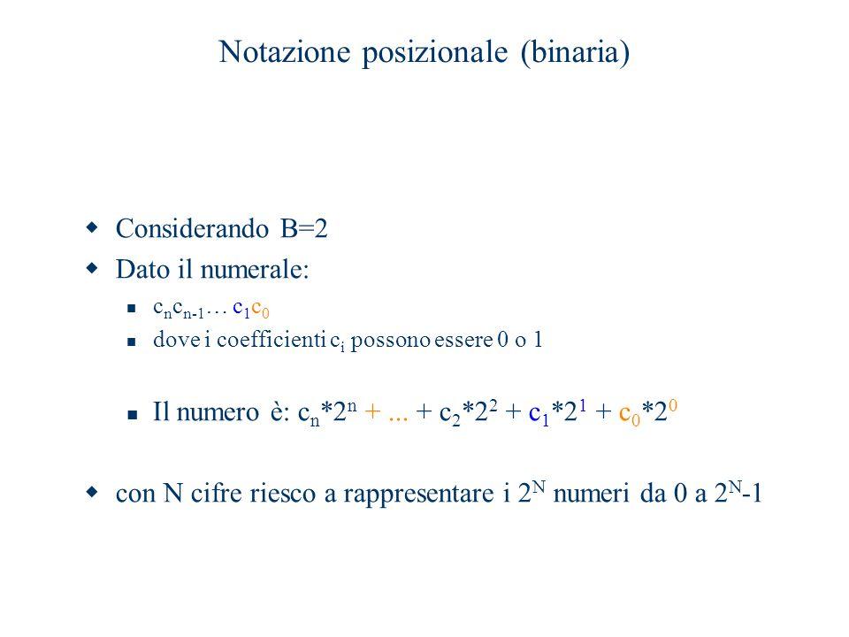 Notazione posizionale (binaria)