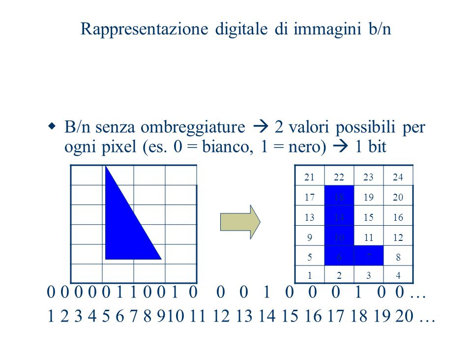 Rappresentazione digitale di immagini b/n