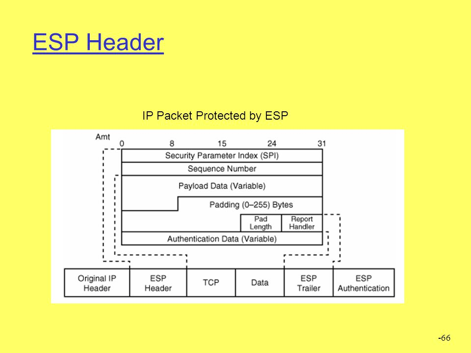 ESP Header IP Packet Protected by ESP