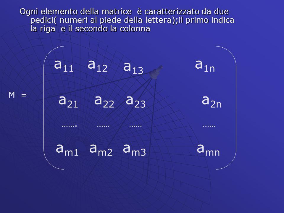 Ogni elemento della matrice è caratterizzato da due pedici( numeri al piede della lettera);il primo indica la riga e il secondo la colonna