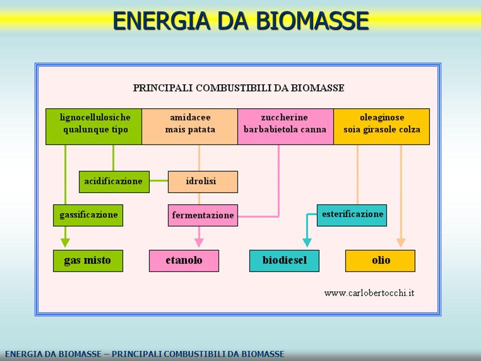 ENERGIA DA BIOMASSE ENERGIA DA BIOMASSE – PRINCIPALI COMBUSTIBILI DA BIOMASSE