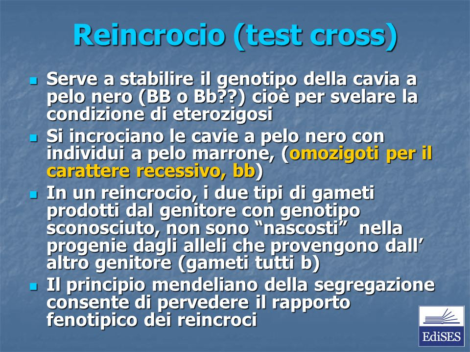 Reincrocio (test cross)