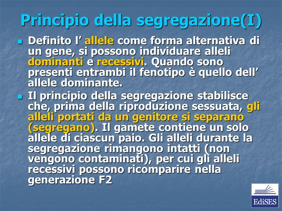 Principio della segregazione(I)