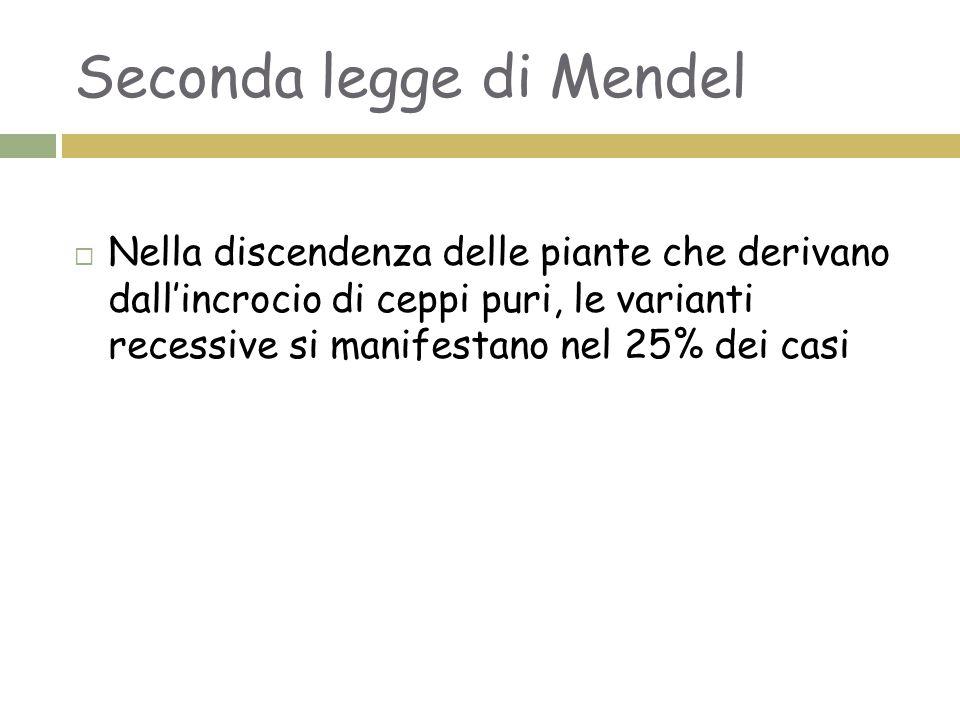 Seconda legge di Mendel
