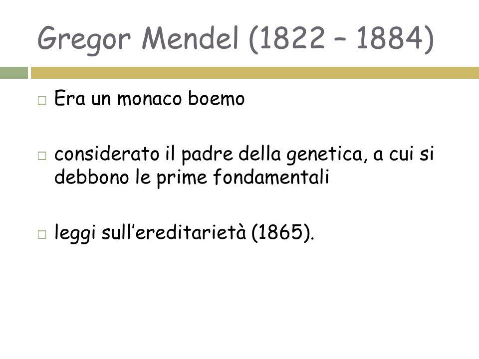 Gregor Mendel (1822 – 1884) Era un monaco boemo
