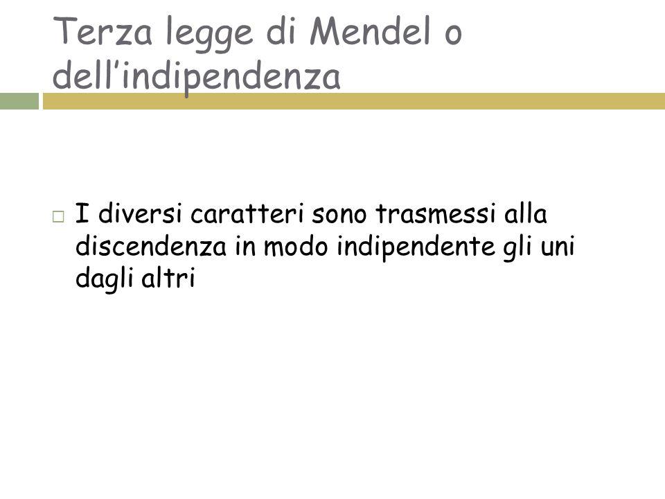 Terza legge di Mendel o dell'indipendenza