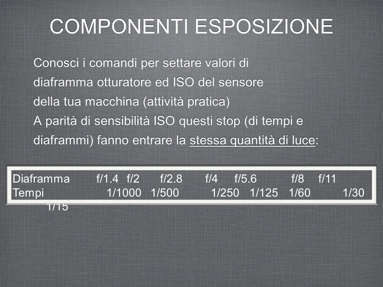 COMPONENTI ESPOSIZIONE