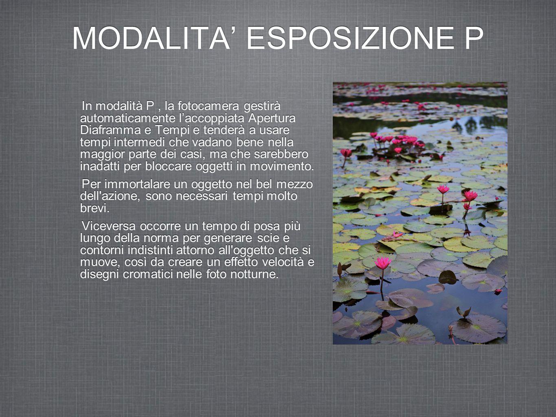 MODALITA' ESPOSIZIONE P