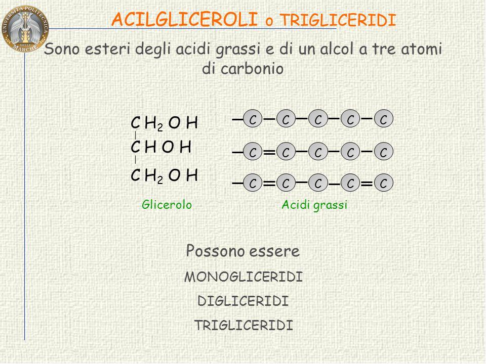 Sono esteri degli acidi grassi e di un alcol a tre atomi di carbonio